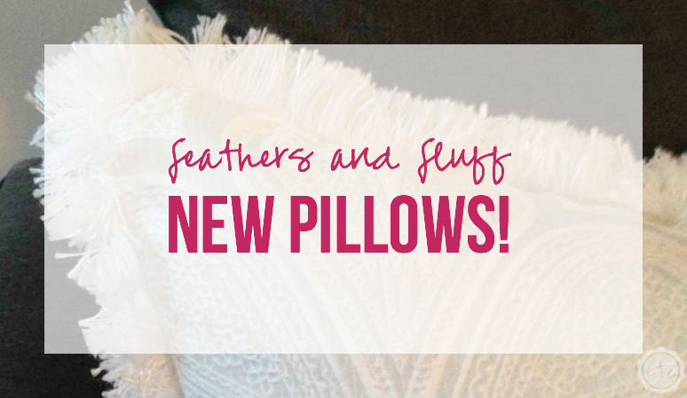 Feathers and Fluff – New Pillows!