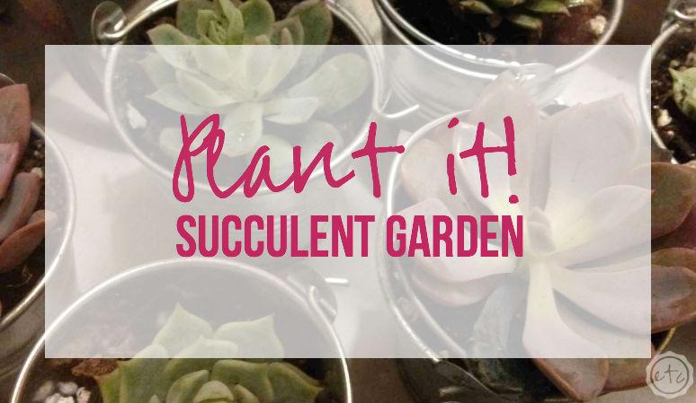 Plant it! – Succulent Garden