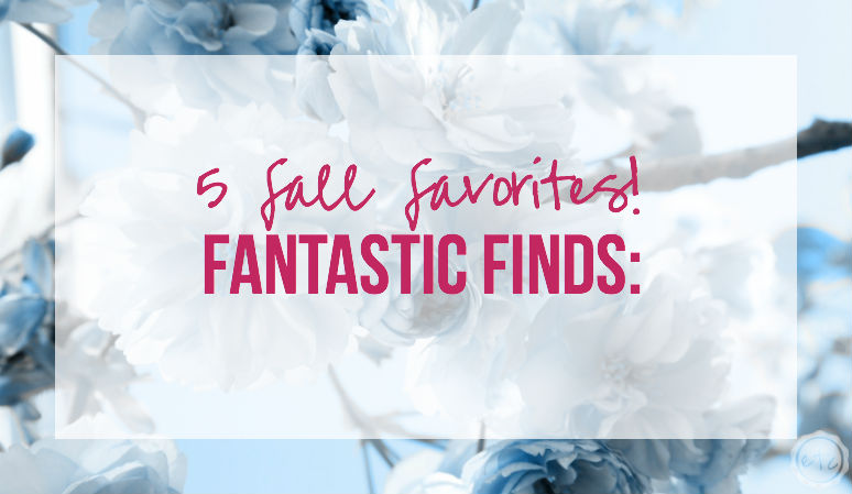 Fantastic Finds: 5 Fall Favorites!