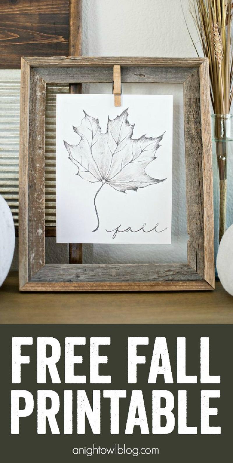 2-free-fall-printable
