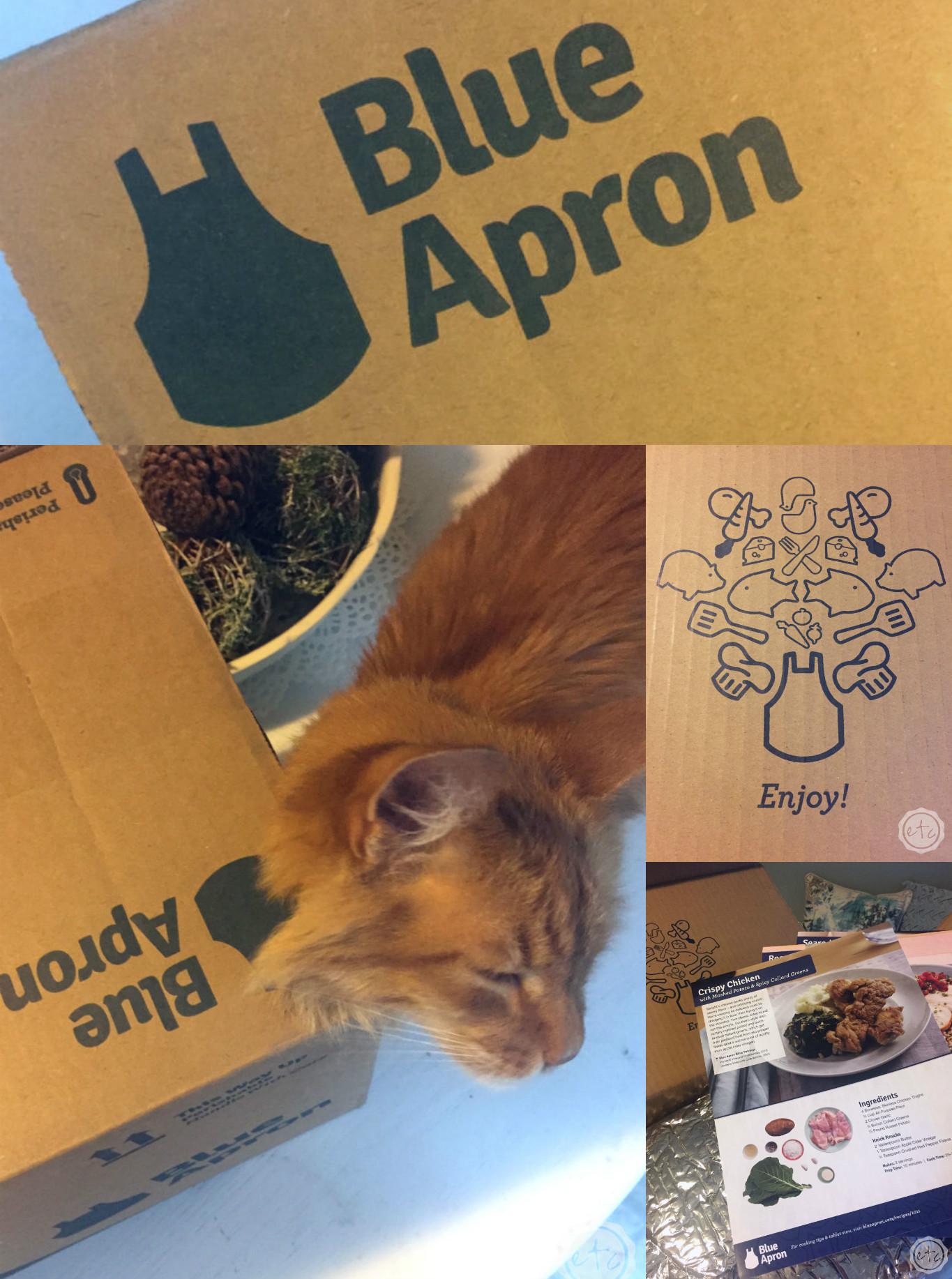 I love love love our Blue Apron Box... this is the perfect gift for a foodie or a busy mom... take your pick!