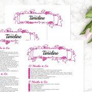 Hot Pink Wedding Binder D
