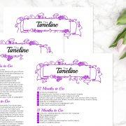 Purple Wedding Binder D