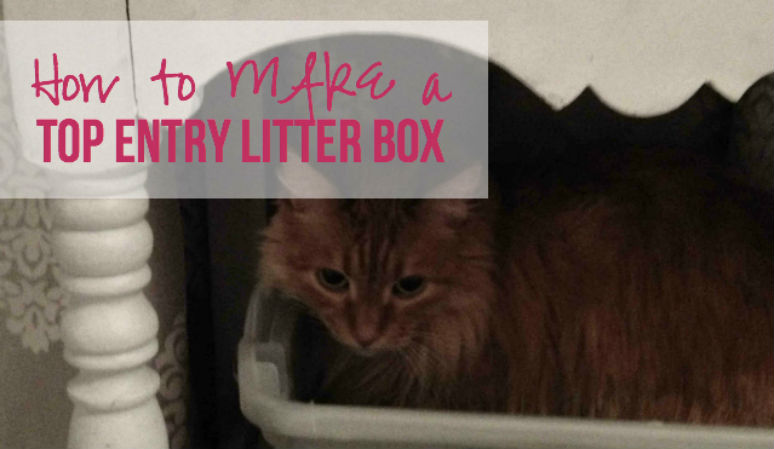 How to MAKE a Top Entry Litter Box