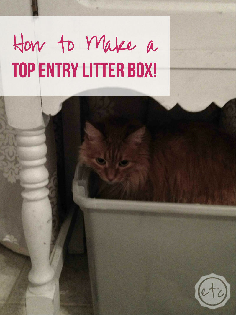 How to Make a Top Entry Litter Box with Happily Ever After ETC