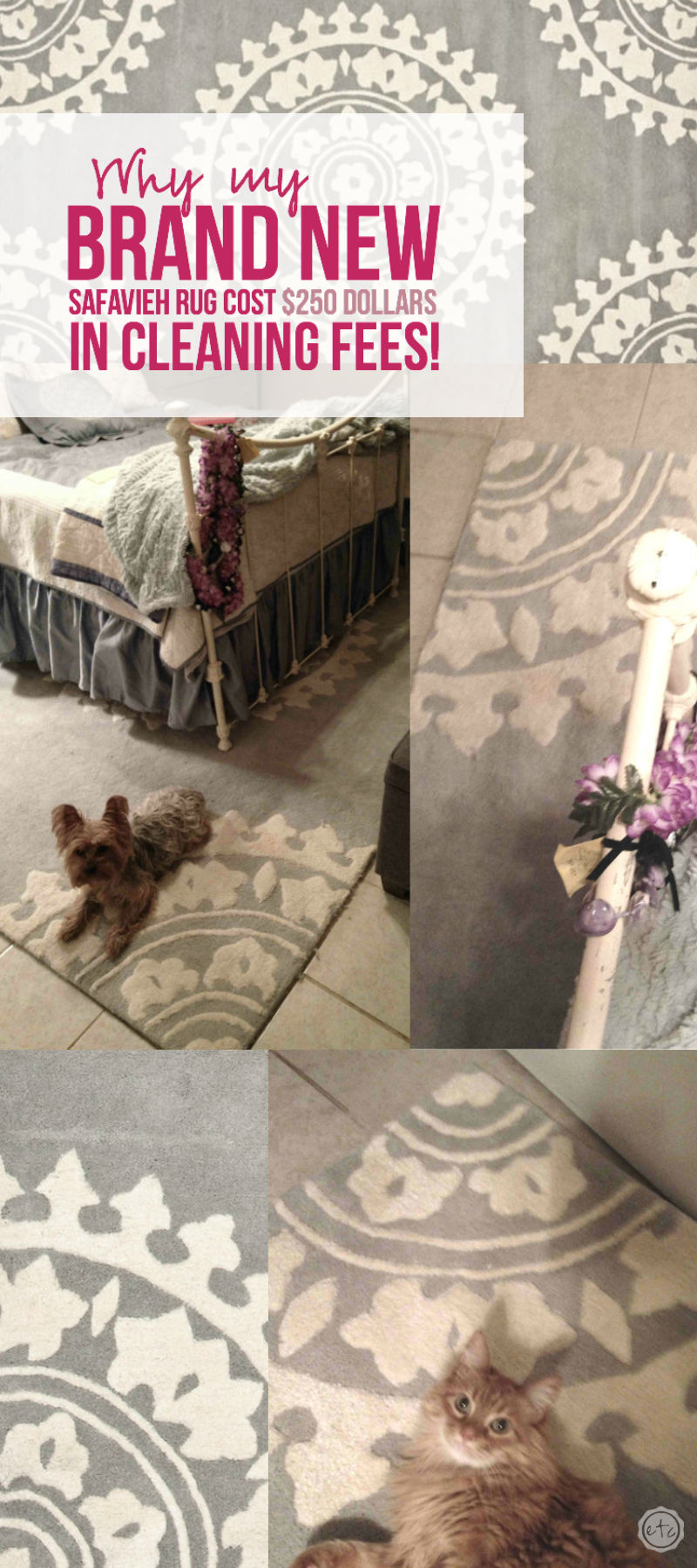 Why my BRAND NEW Safavieh Rug Cost $250 dollars in Cleaning Fees! with Happily Ever After, Etc.