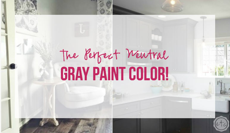 The Perfect Neutral Gray Paint Color!
