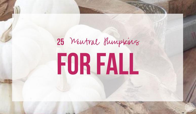 25 Neutral Pumpkins for Fall