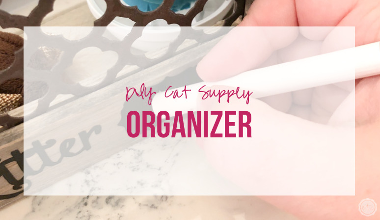 DIY Cat Supply Organizer