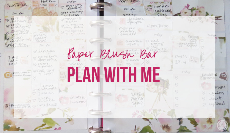 Plan with Me featuring Paper Blush Bar