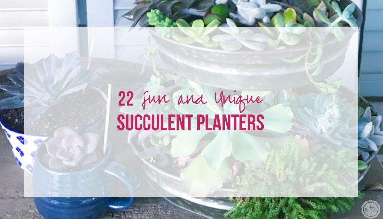 25 Fun and Unique Succulent Planters