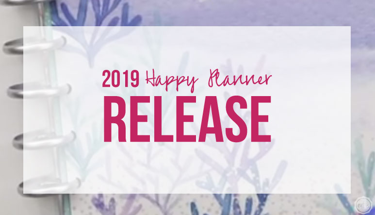 2019 Happy Planner 12 Month Release