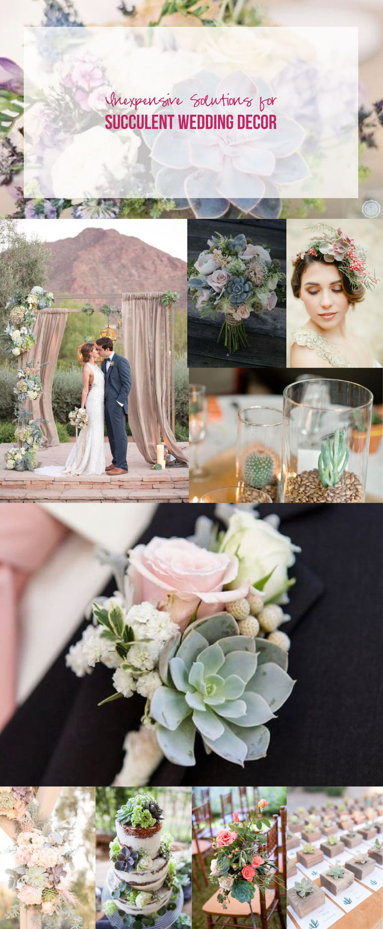 Inexpensive Solutions For Succulent Wedding Decor Happily Ever After Etc