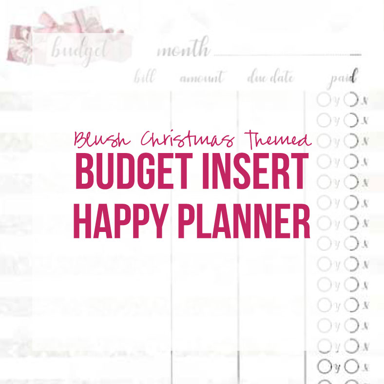 picture relating to Happy Planner Budget Printable named Blush Xmas Incorporate Price range (Pleased Planner, Printable)