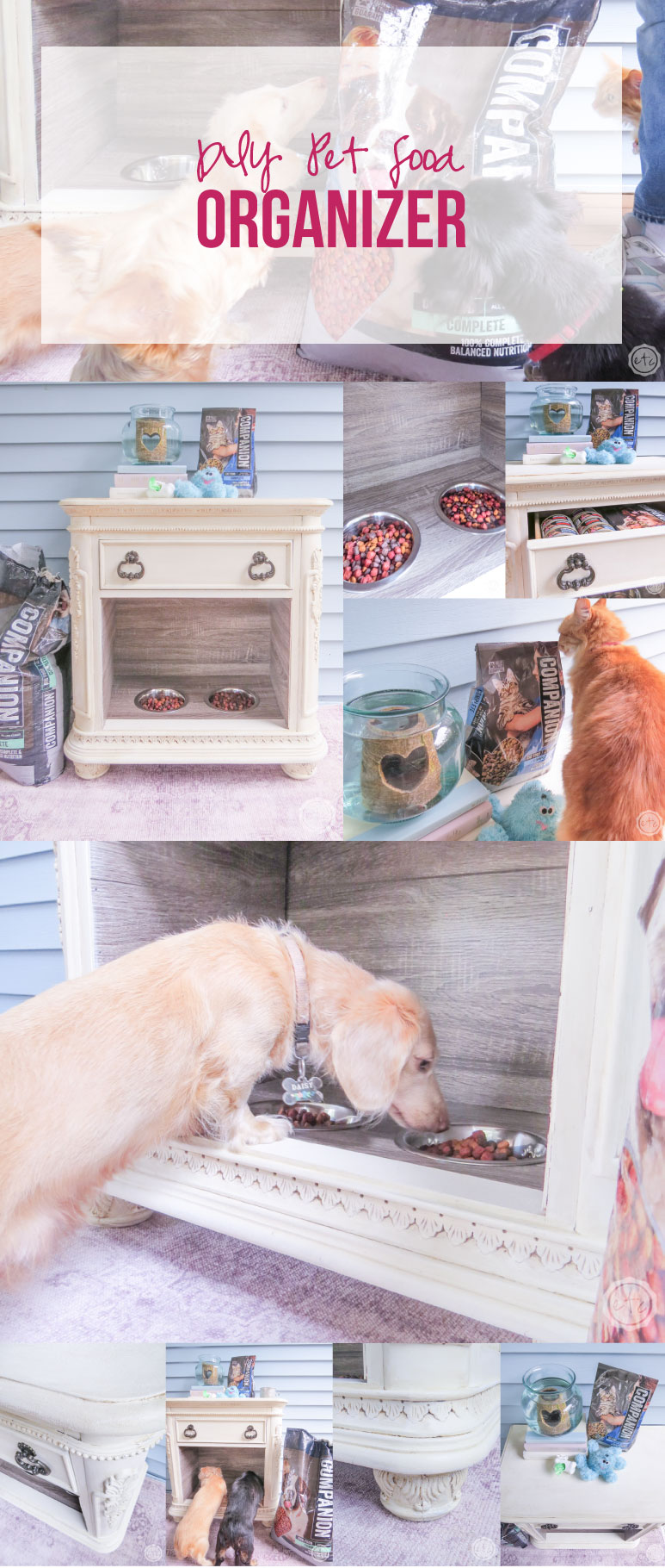 Diy Pet Food Organizer Happily Ever After Etc