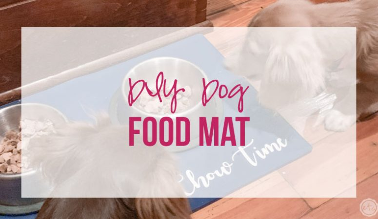 DIY Dog Food Mat