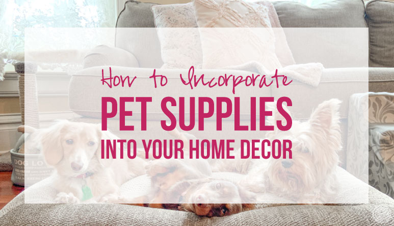 How to Incorporate Pet Supplies into Your Home Decor