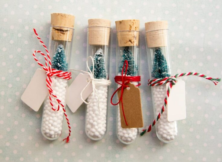 Test tube Christmas Decorations
