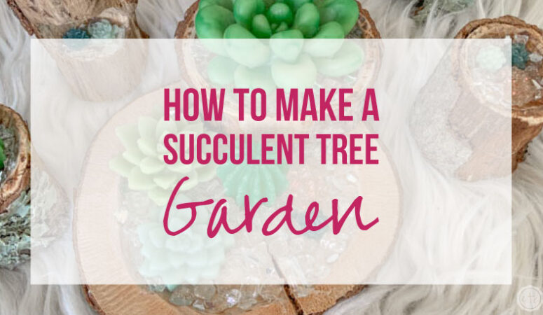 How to Make a Succulent Tree Garden
