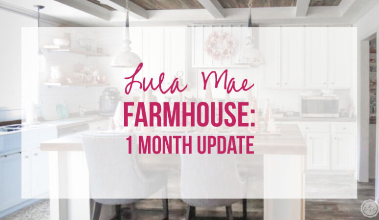 Lula Mae Farmhouse: 1 Month Update