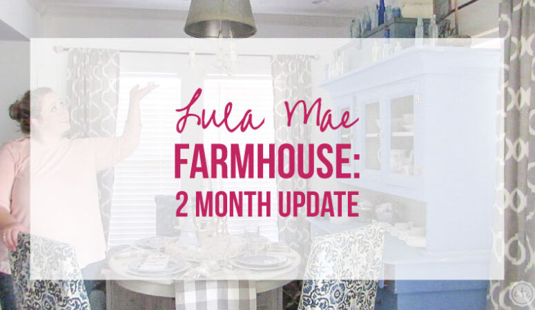 Lula Mae Farmhouse 2 Month Update: List of Things to Fix!